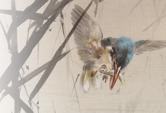 A Strange Yet Popular Being: Bird Catching Fish Among Reeds