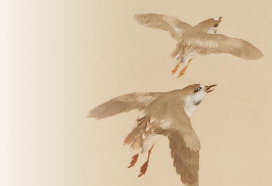 ゆるキャラ千鳥:千鳥・花鳥図