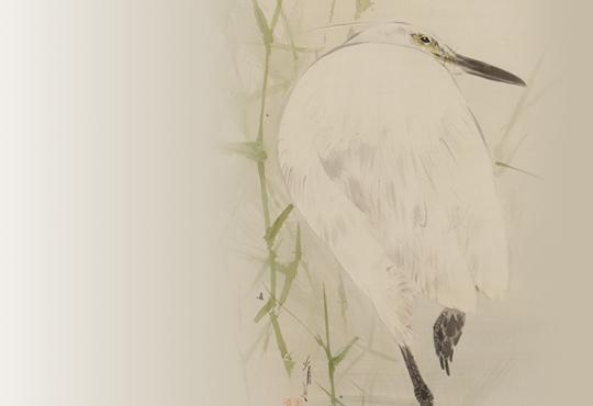 省亭の非写実:よしに鷺の図