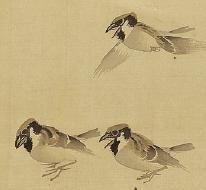 長澤蘆雪「群雀図」(個人蔵)