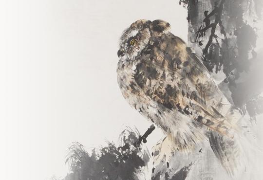 フクロウ類の横顔:月夜にみみずくの図