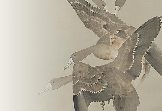 写実と空想の間で:群雁図