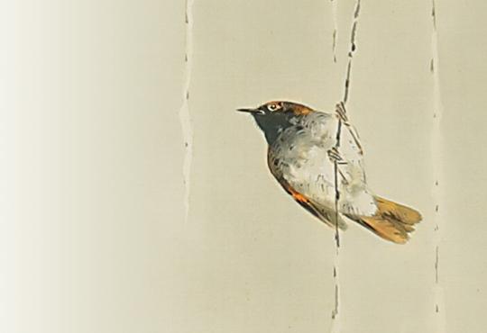 最も鳥好きな日本画家:雪柳