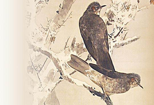 鳥が変えた芸術:雪中鵯図